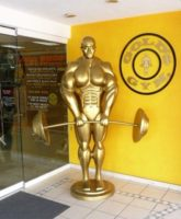 golds gym puerto vallarta
